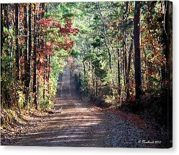 Canvas Print featuring the photograph Going Home by Betty Northcutt