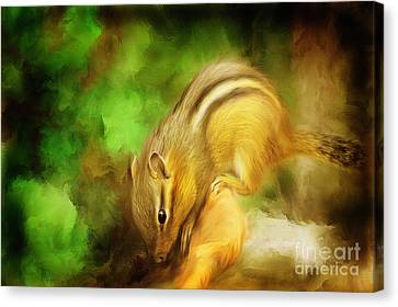 Going Nuts Canvas Print