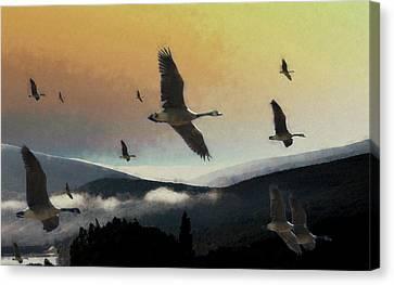 Going South Canvas Print by John Stuart Webbstock