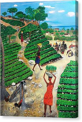 Going To The Marketplace #4 -  Walking Through The Terraces Canvas Print by Nicole Jean-Louis