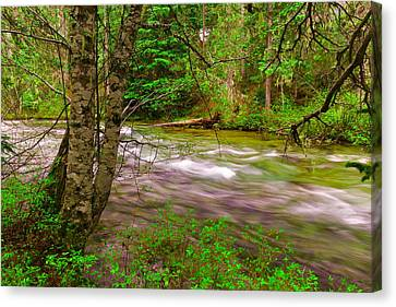 Going To The River Canvas Print by Jeff Swan