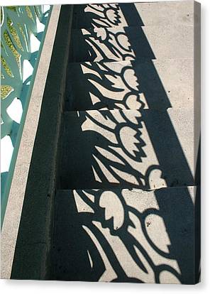 Going Up Or Down Canvas Print by Marie Neder