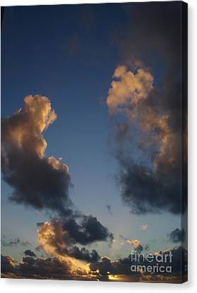 Gold Clouds  Canvas Print by Chad Natti