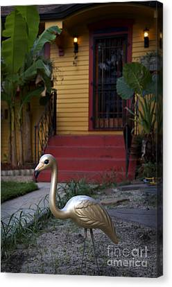 Gold Flamingo Canvas Print by Jeanne  Woods
