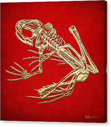 Gold Frog Skeleton On Red Leather Canvas Print by Serge Averbukh