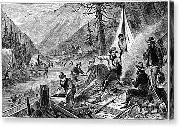 Gold Mining, 1853 Canvas Print by Granger