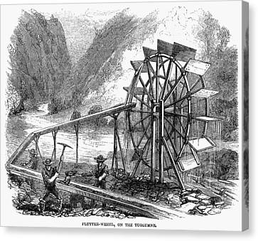 Gold Mining, 1860 Canvas Print by Granger