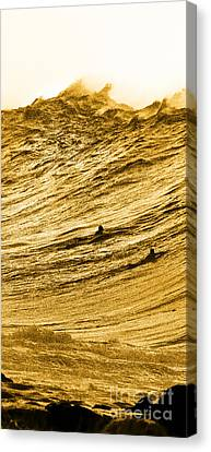 Gold Nugget -  Part 1 Of 3 Canvas Print by Sean Davey