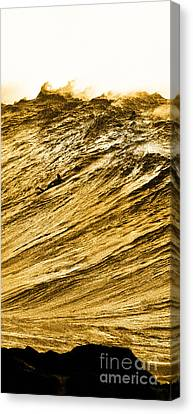 Gold Nugget -  Part 2 Of 3 Canvas Print by Sean Davey