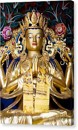 Golden Amitaba Buddha Statue Canvas Print by Tim Gainey