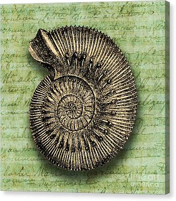 Golden Ammonite Canvas Print by Ramneek Narang