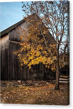 Golden Barn Canvas Print by Andrew Kazmierski