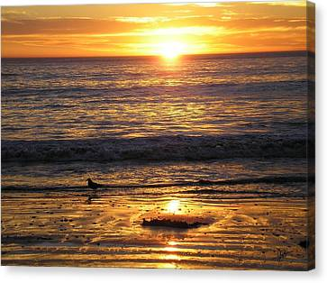 Golden Beach Canvas Print by J Perez