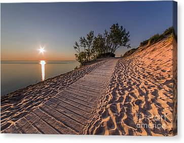 Scenic Drive Canvas Print - Golden Boardwalk by Twenty Two North Photography