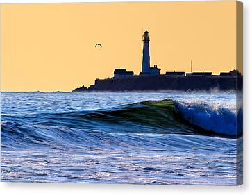 Golden California Coast - Pigeon Point Lighthouse Canvas Print by Mark E Tisdale