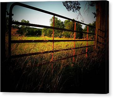 Golden Country Fence Canvas Print by Joyce Kimble Smith