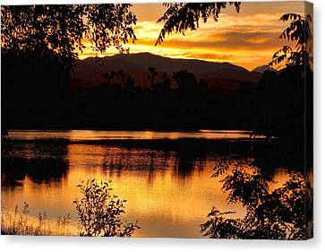 Golden Day At The Lake Canvas Print by James BO  Insogna