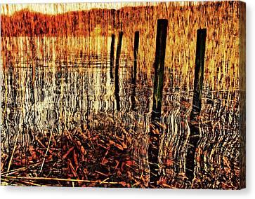 Golden Decay Canvas Print by Meirion Matthias