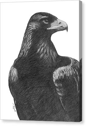 Golden Eagle Canvas Print by Lawrence Tripoli
