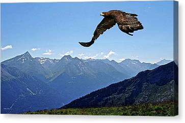 Golden Eagle Canvas Print by Thomas Pollart