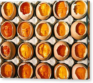 Golden Eggs 2 Canvas Print by Mark Cawood
