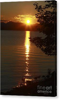 Golden Evening Sun Rays Canvas Print by Deborah Benoit