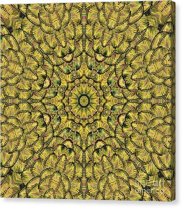Golden Feather Mandala 2 Canvas Print by Marv Vandehey