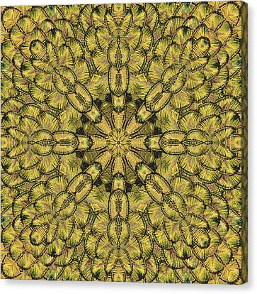 Golden Feather Mandala Canvas Print by Marv Vandehey