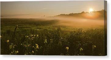 Golden Fog Sunrise At The Refuge Canvas Print
