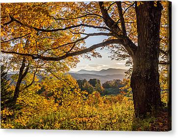 Vermont Framed In Gold Canvas Print