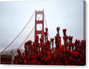 Golden Gate Bridge Red Flowers Canvas Print
