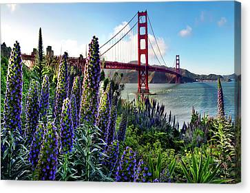 Golden Gate Flowers Canvas Print