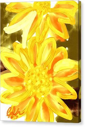 Golden Gerbers Canvas Print by Carl Griffasi