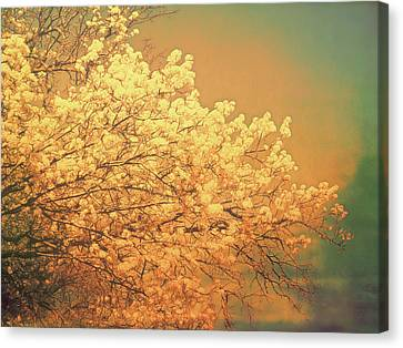 Canvas Print - Golden Glow by Ann Powell