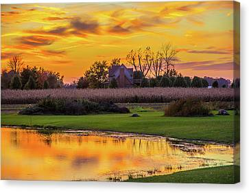 Golden Glow Canvas Print by Randall Branham