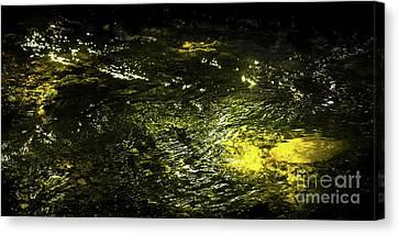 Golden Glow Canvas Print by Tatsuya Atarashi