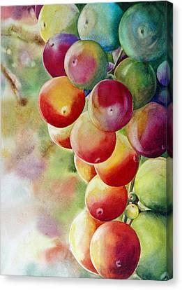 Golden Grapes Canvas Print