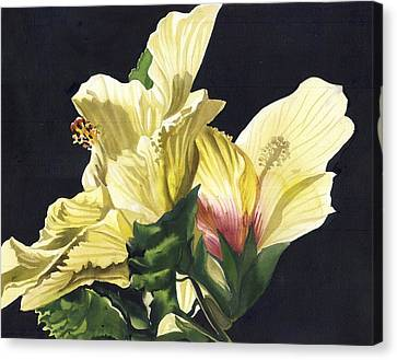Golden Hibiscus Canvas Print by Alfred Ng