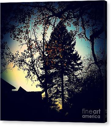 Golden Hour Foliage Canvas Print