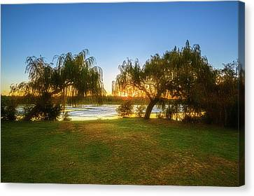 Canvas Print featuring the photograph Golden Lake, Yanchep National Park by Dave Catley