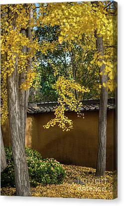 Golden Leaves Canvas Print by Jamie Pham