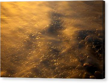 Golden Light Canvas Print by Mike  Dawson