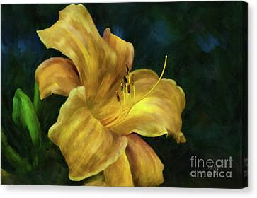 Canvas Print featuring the digital art Golden Lily by Lois Bryan