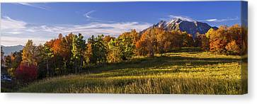 Golden Meadow Canvas Print by Chad Dutson