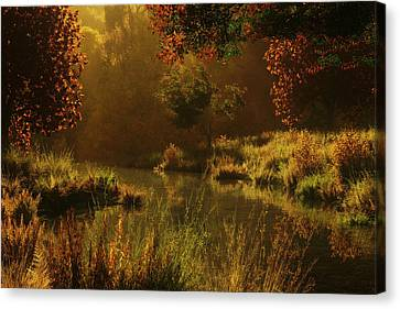 Golden Canvas Print by Melissa Krauss