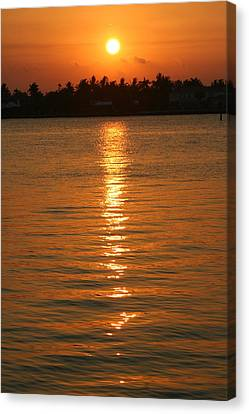 Canvas Print featuring the photograph Golden Moment by Diane Merkle
