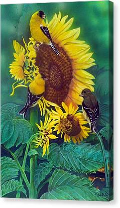 Golden Morning  Sold Canvas Print