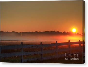 Golden Morning Canvas Print by Robert Pearson
