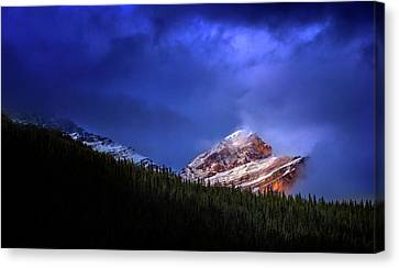 Canvas Print featuring the photograph Golden Nugget by John Poon