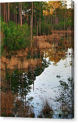 Canvas Print featuring the photograph Golden Pond by Lori Mellen-Pagliaro